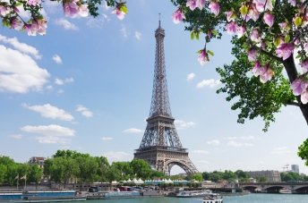 Paris Hop-on Hop-off Sightseeing Bus Tour - Extrapolitan