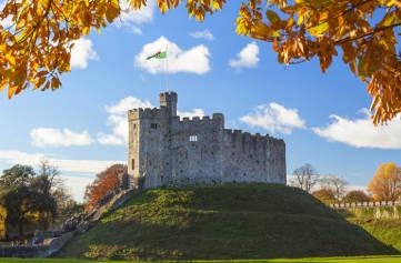 Navigatours Cardiff - Le tour panoramique