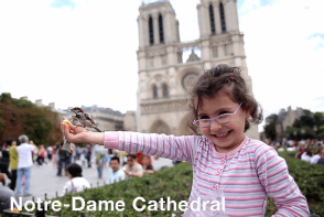 Notre Dame Cathedrale - Paris Sightseeing. Extrapolitan